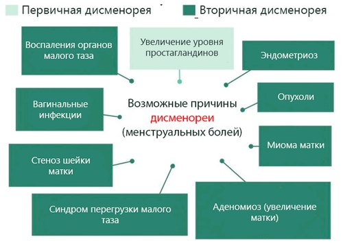 классификация альгодисменореи