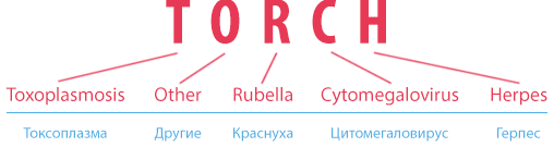 ТОРЧ-инфекции