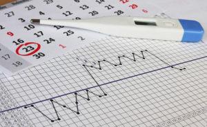 правила измерения ректальной температуры перед меясчными
