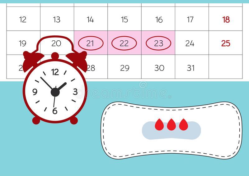 Через сколько дней приходят месячные после предыдущих: норма интервала