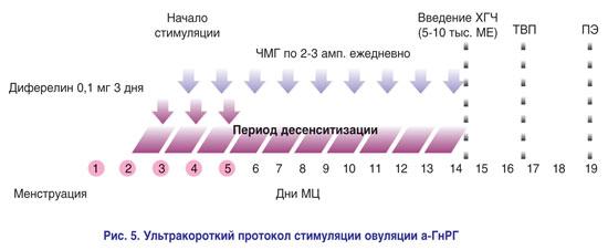 Стимуляция овуляции