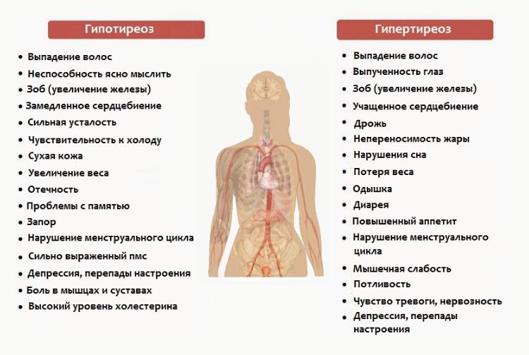 симптомы гипер и гипотиреоза