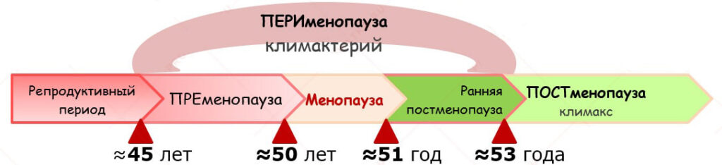 менопауза периоды