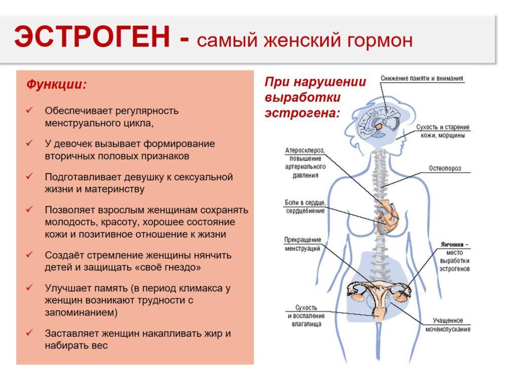 эстрогеноподобный эффект фитоэстрогенов