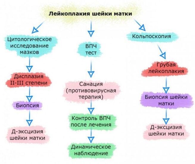 лейкоплакия протокол обследования